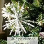 DIY Pipe Cleaner Ornament